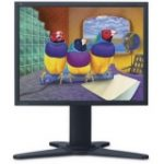 "VP2130b 54 cm 21.3"" LCD Monitor 1600 x 1200 @ 1600 - 0.270 mm - Black"