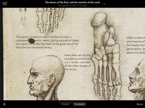 Leonardo da Vinci: Anatomy 3