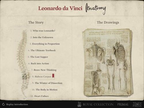Leonardo da Vinci: Anatomy 4