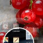 LG Optimus L5 II E610 4