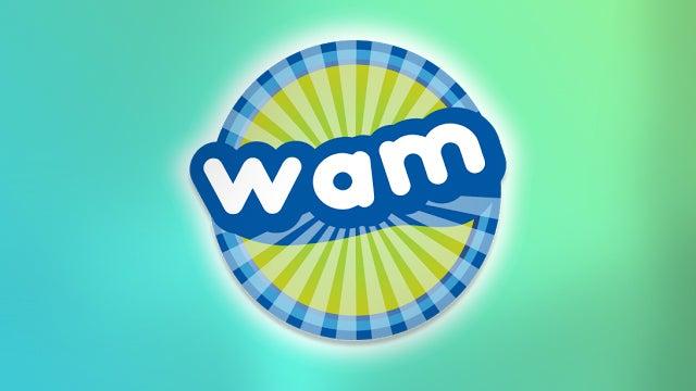 WAMmain