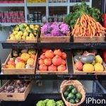 iPhone 6S camera photos 19