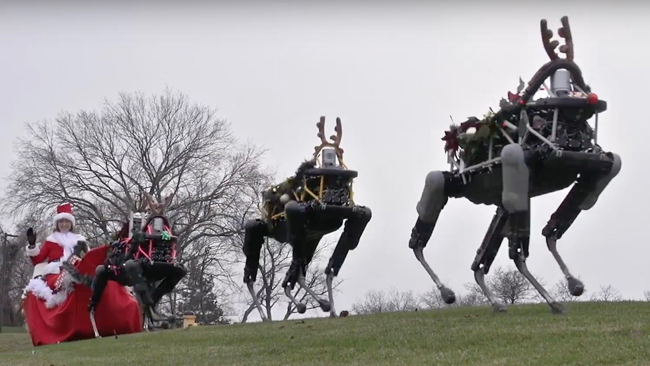 Four-legged military robots became Christmas reindeer
