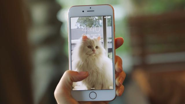 Live Photos explained: How the iPhone 6S and 6S Plus camera feature works