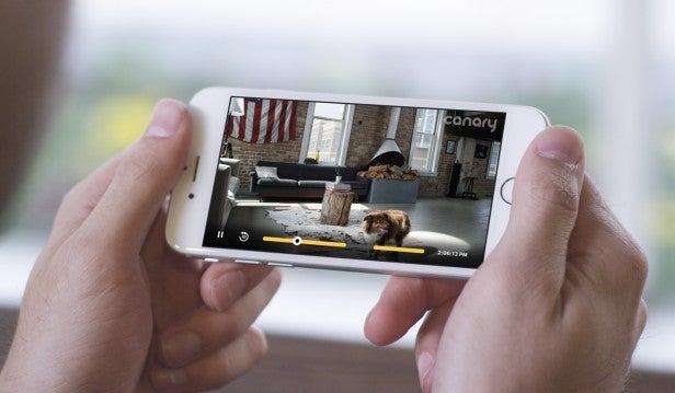Canary camera app
