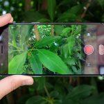 OnePlus 3 33