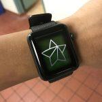 Apple Watch Series 2 21