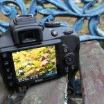 Nikon D3400 15
