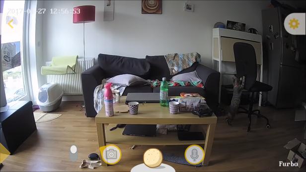 Furbo Dog Camera 1