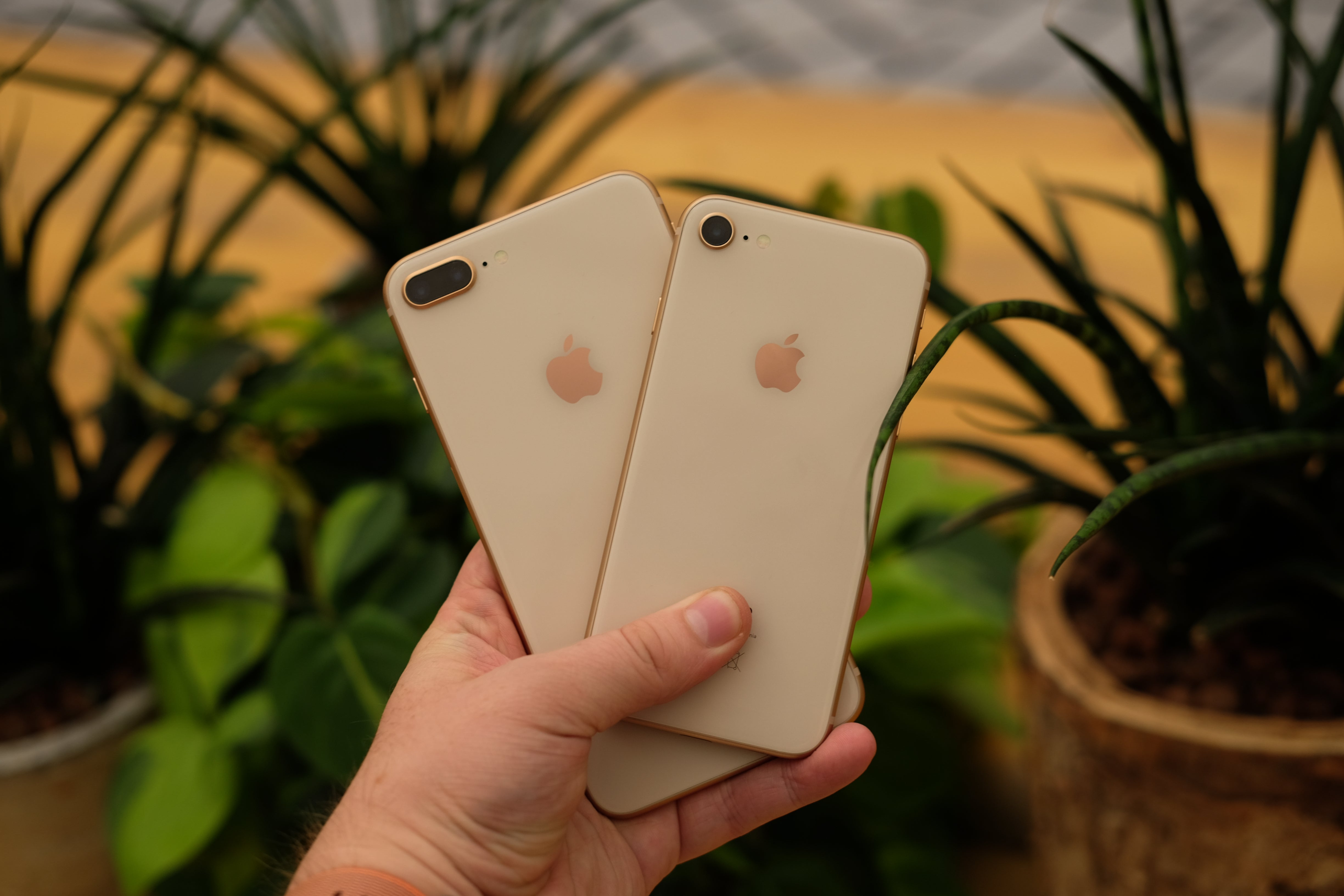 Iphone 8 Review Battery Life And Verdict Trusted Reviews Hp 6s Plus 64gb No Finger Gold