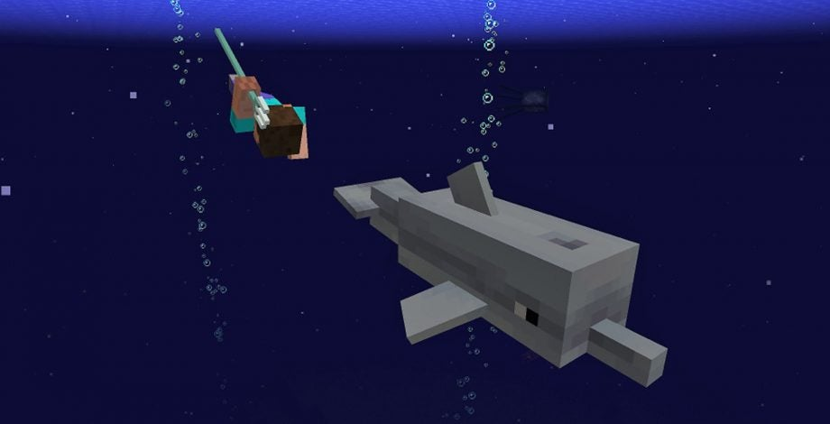 Dolphins are coming to Minecraft, but big graphics update is delayed