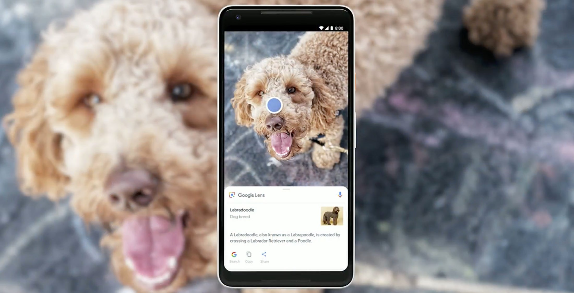 Google Lens: Real-time search comes to your phone's camera