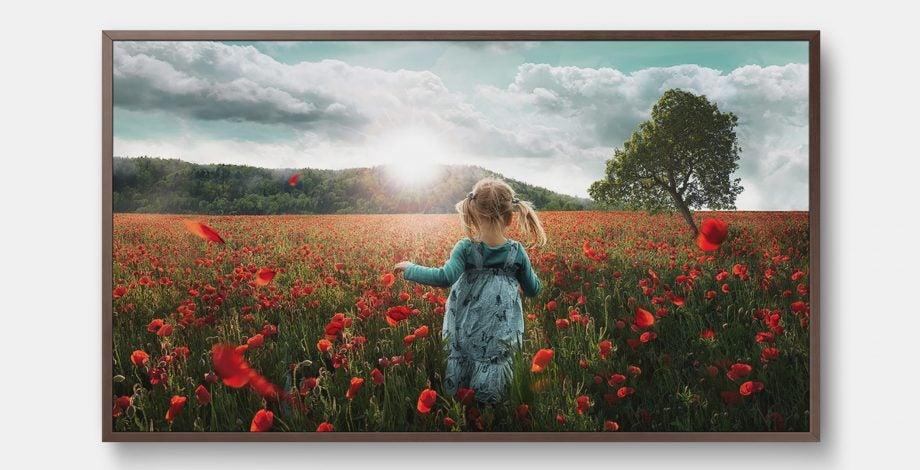 SAmsung Frame TV 2018 4K HDR10 television art