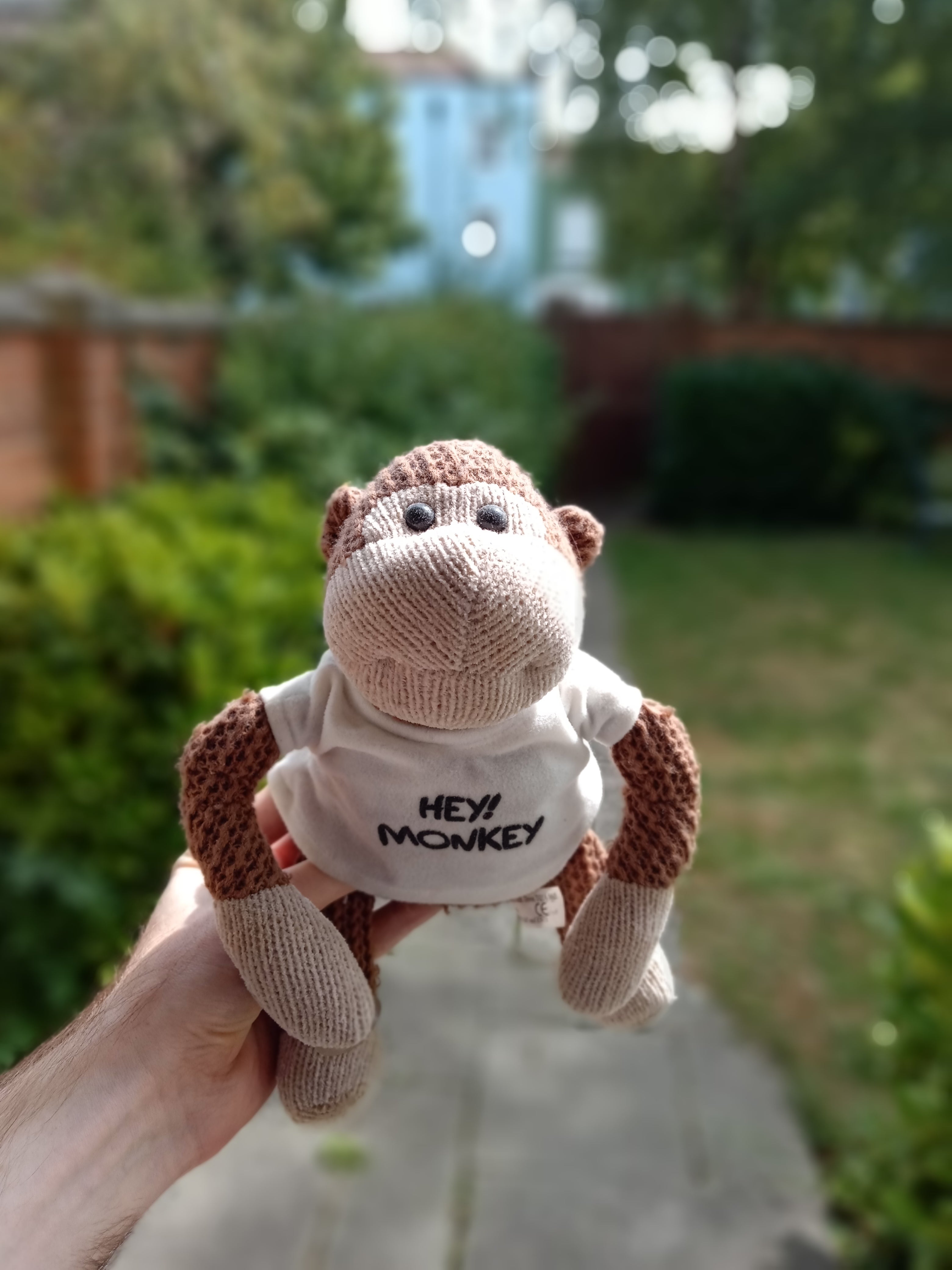 Nuu Mobile G3 camera sample - portrait mode with a monkey doll