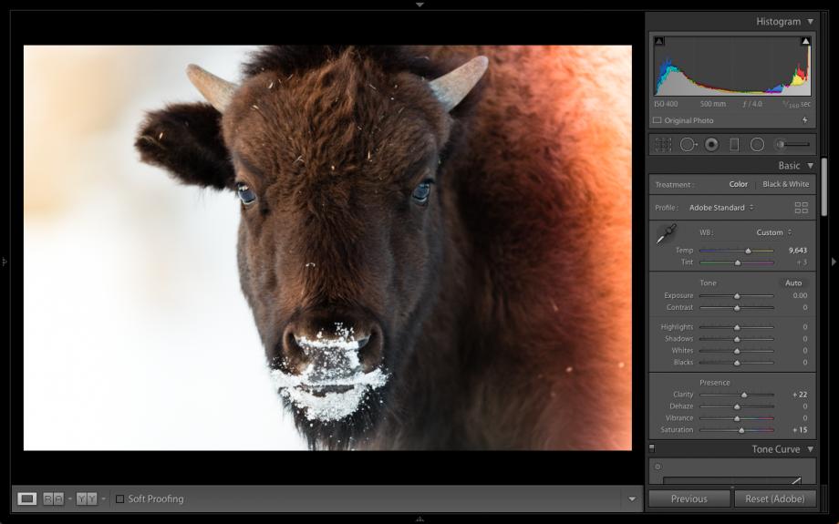 Best free Lightroom presets: the 22 best presets for portraits