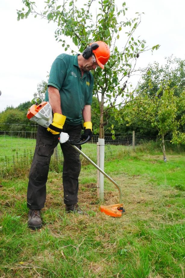 Stihl FS 50 CE Brush Cutter Review | Trusted Reviews