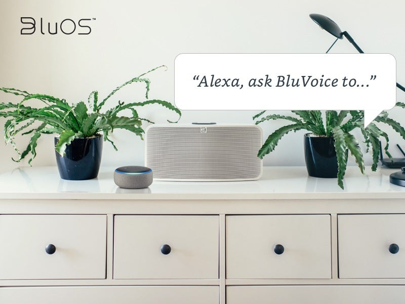Bluesound Amazon Alexa skills