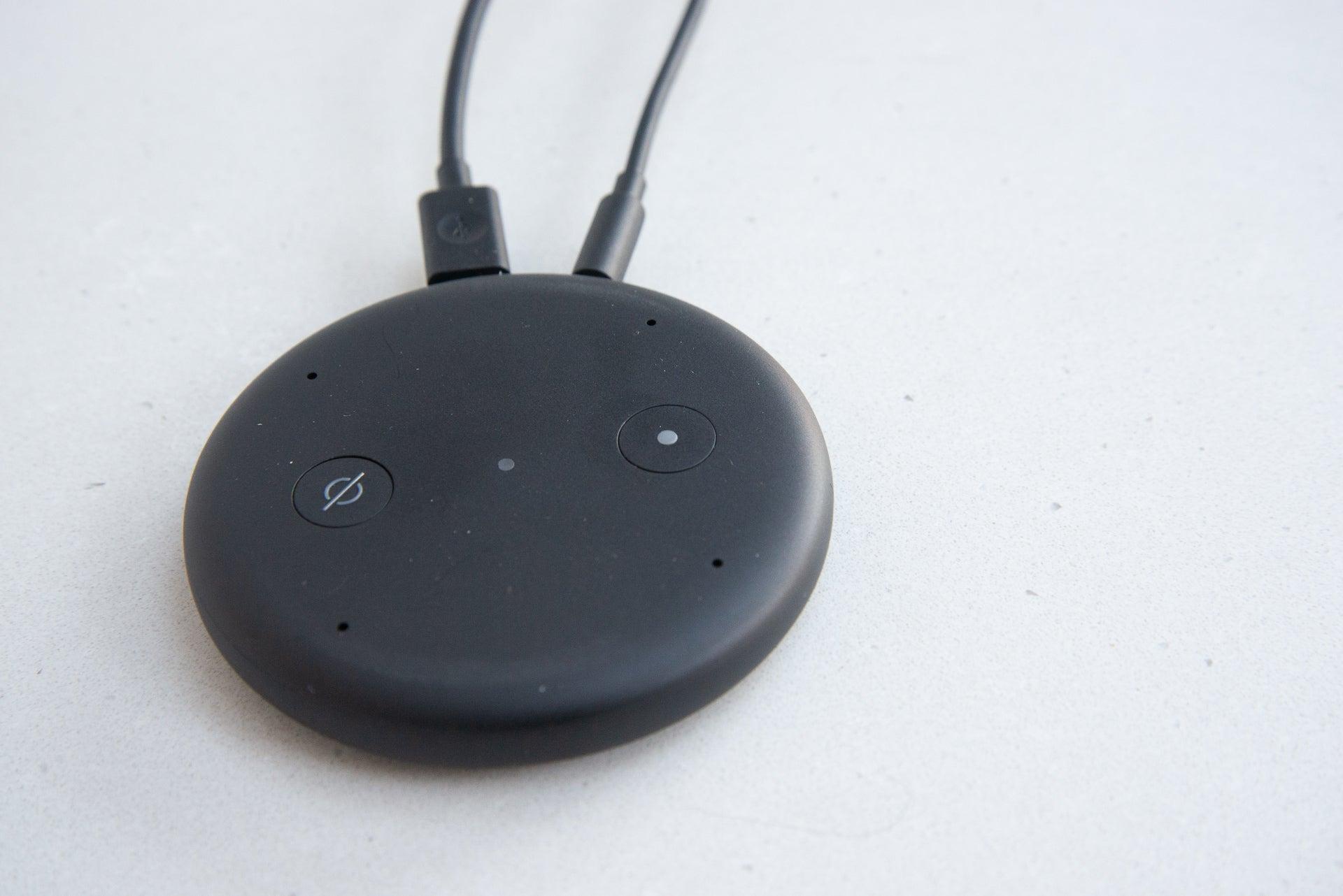 Amazon Echo Input controls