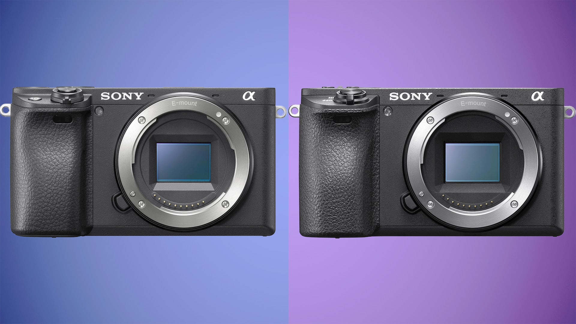 Sony Alpha A6400 vs A6500: Which should you buy? | Trusted Reviews