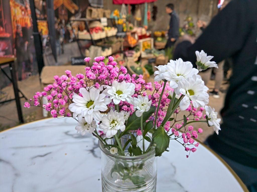 Nokia 9 PureView prerelease firmware camera sample flowers