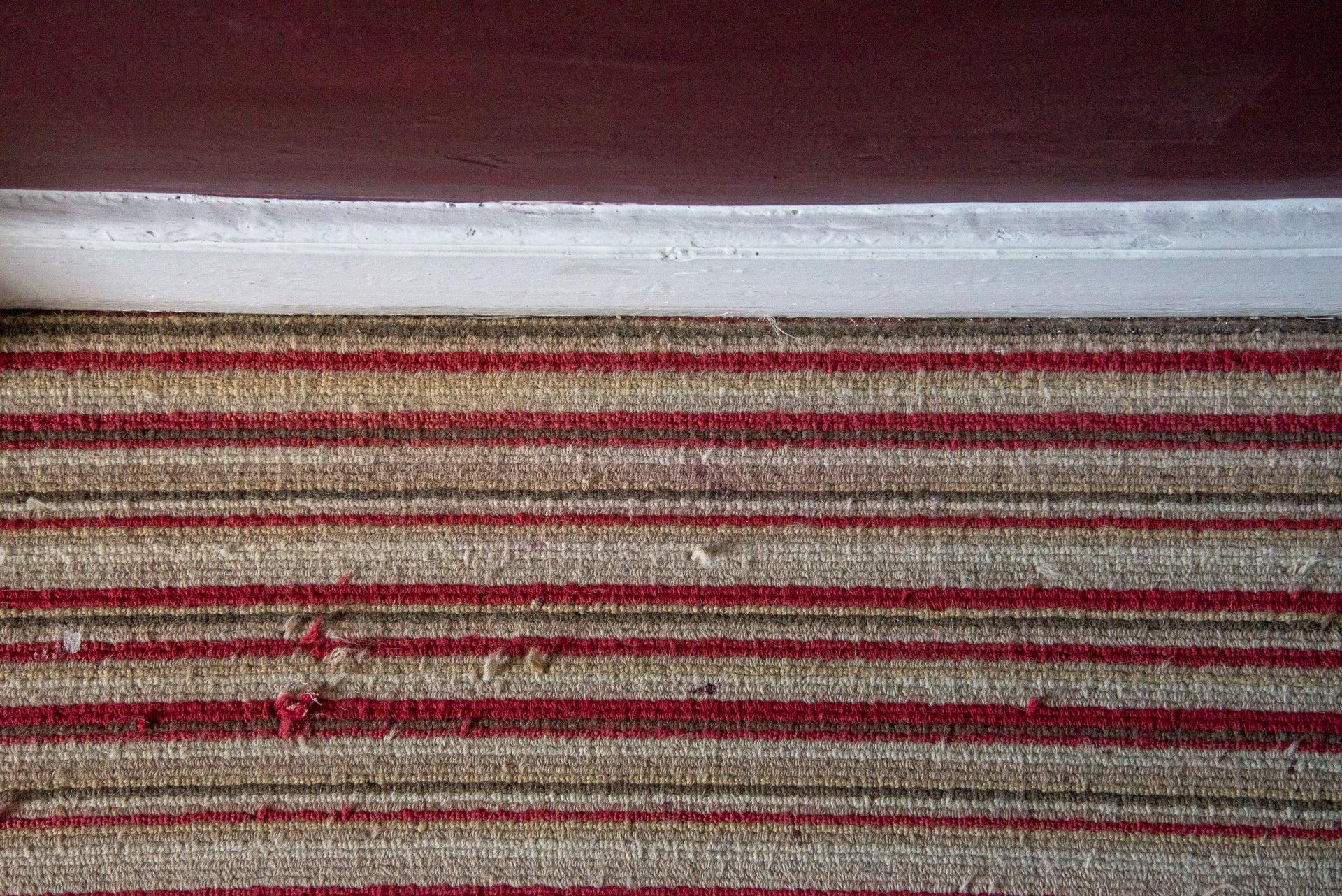 Dyson V11 Absolute clean carpet