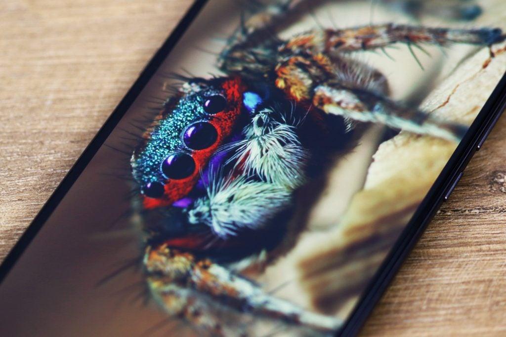 Макрос экрана Xiaomi Mi 9