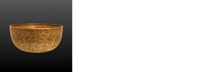 Insight timer app logo wide