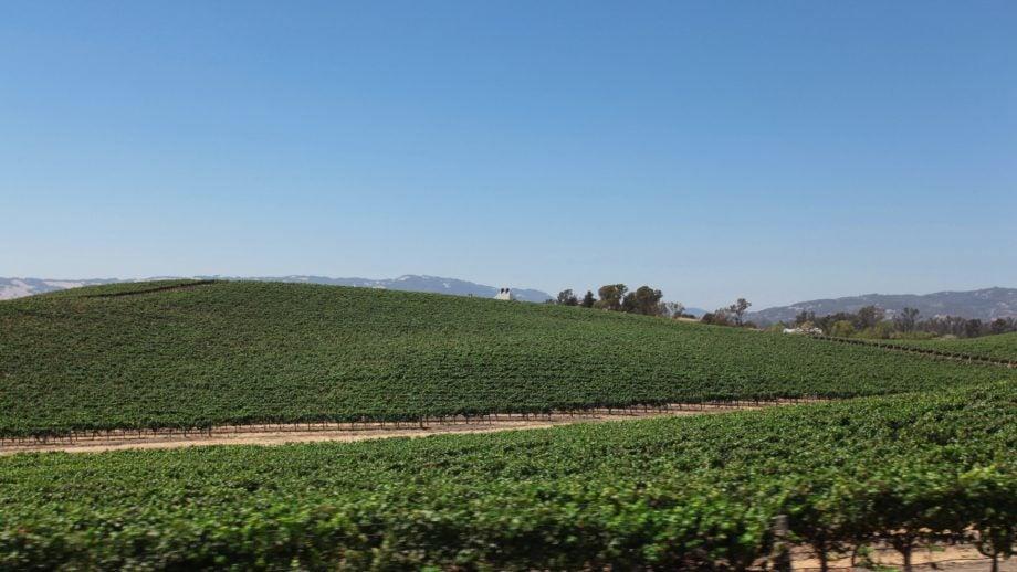 Windows XP 'Bliss' hills in 2012