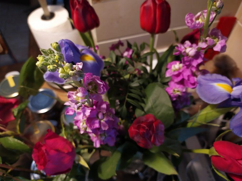 Xiaomi Redmi Note 7 camera sample colourful flowers indoors