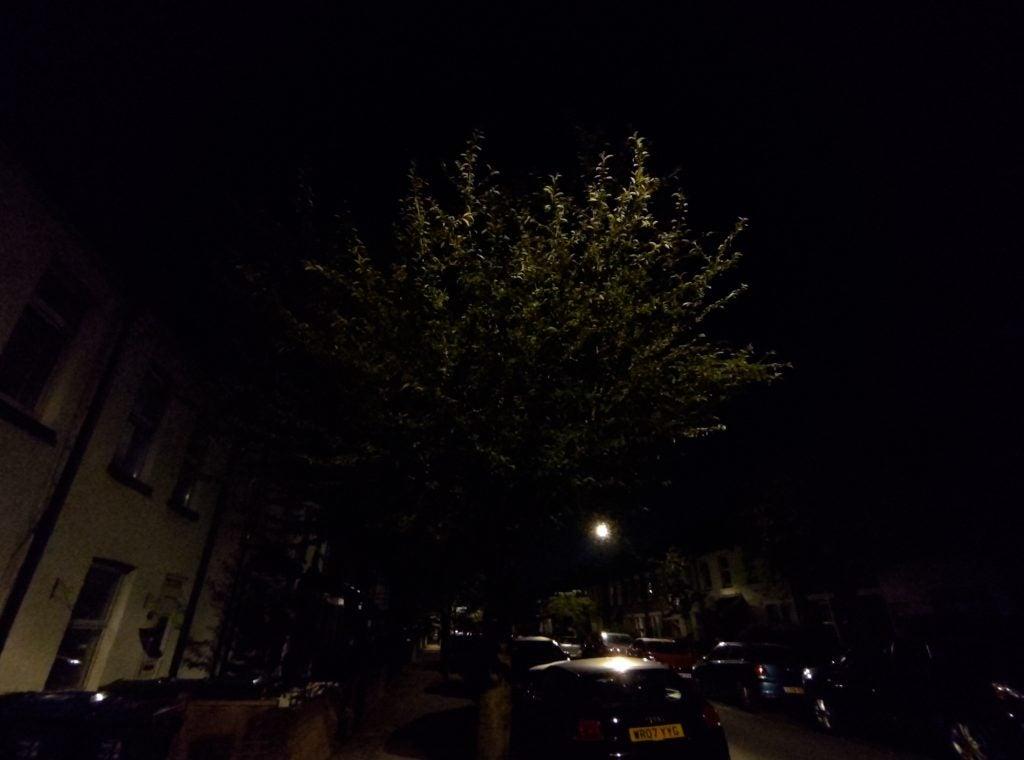 Asus ZenFone 6 образец камеры при слабом освещении сверхширокое дерево