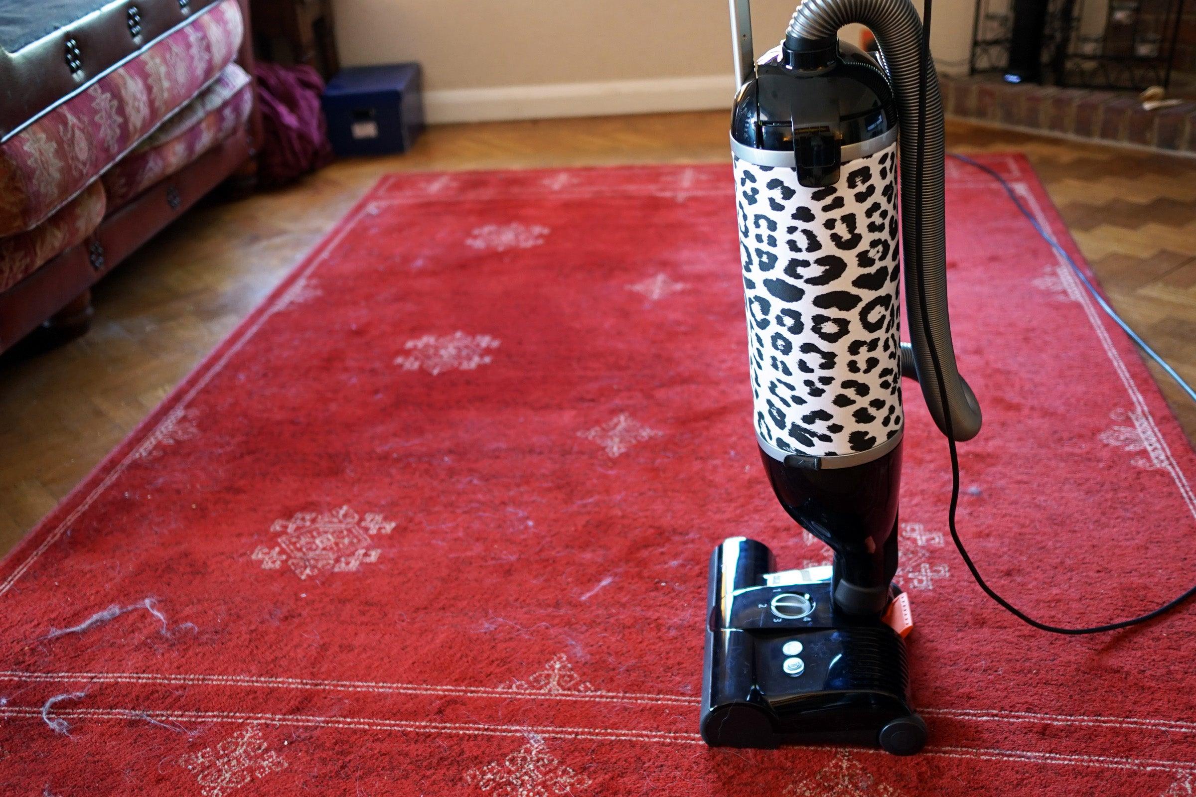Sebo Felix Wild Epower Vacuum Cleaner Review 4