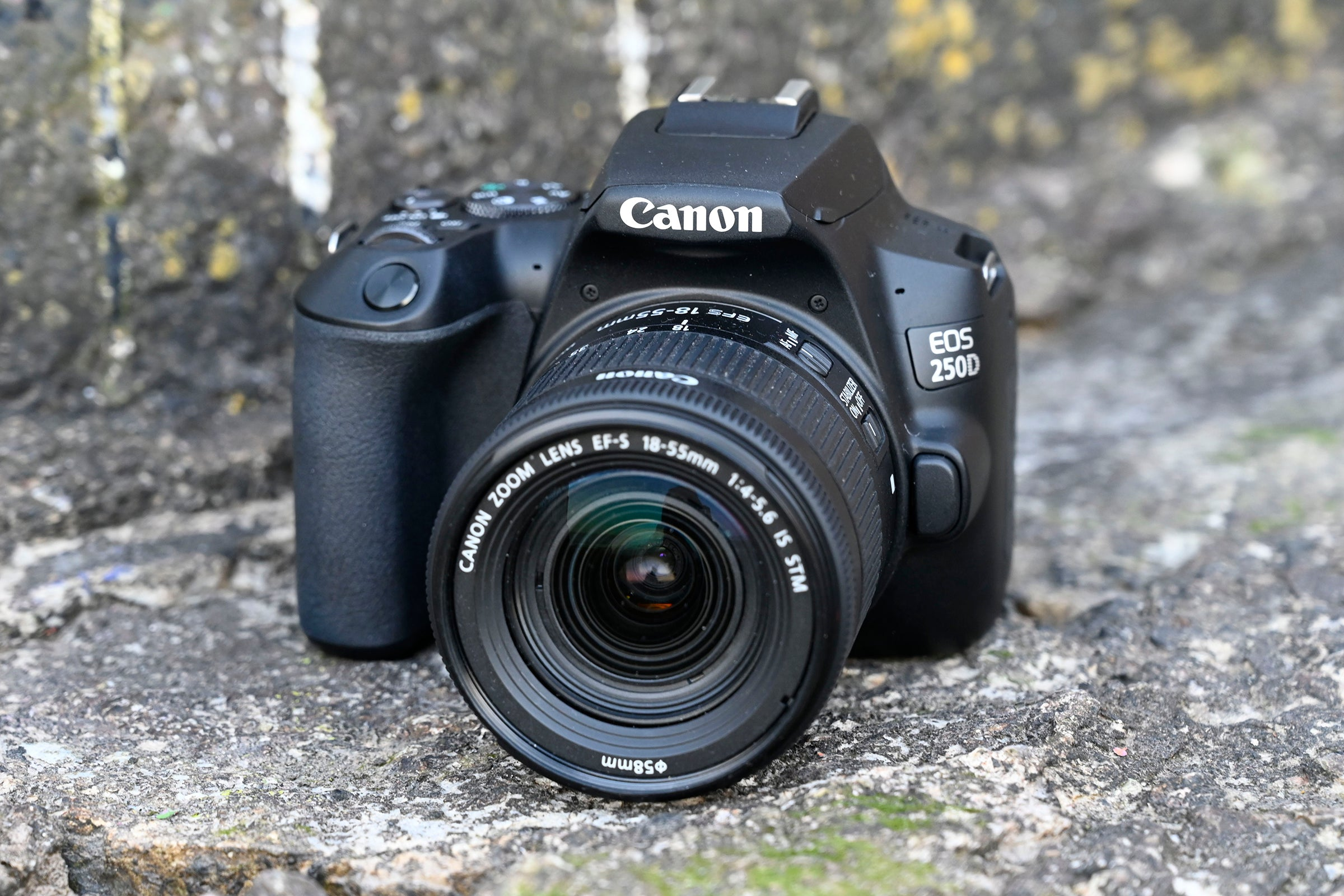 Best Camera 2019: The 15 best cameras you can buy today | Trusted