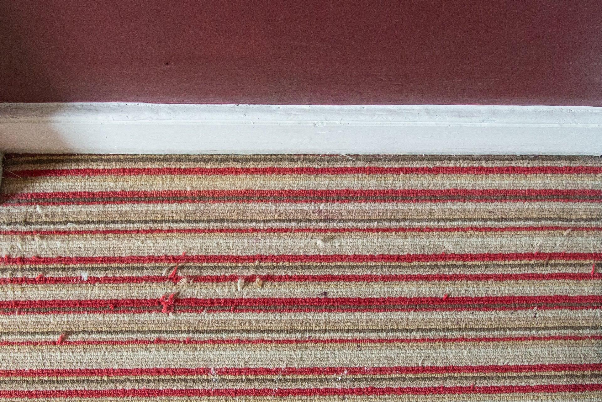 Vorwerk Kobold VB100 clean carpet