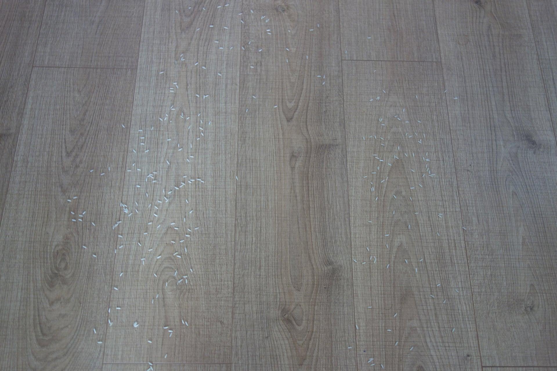 Gtech Hylite clean hard floor