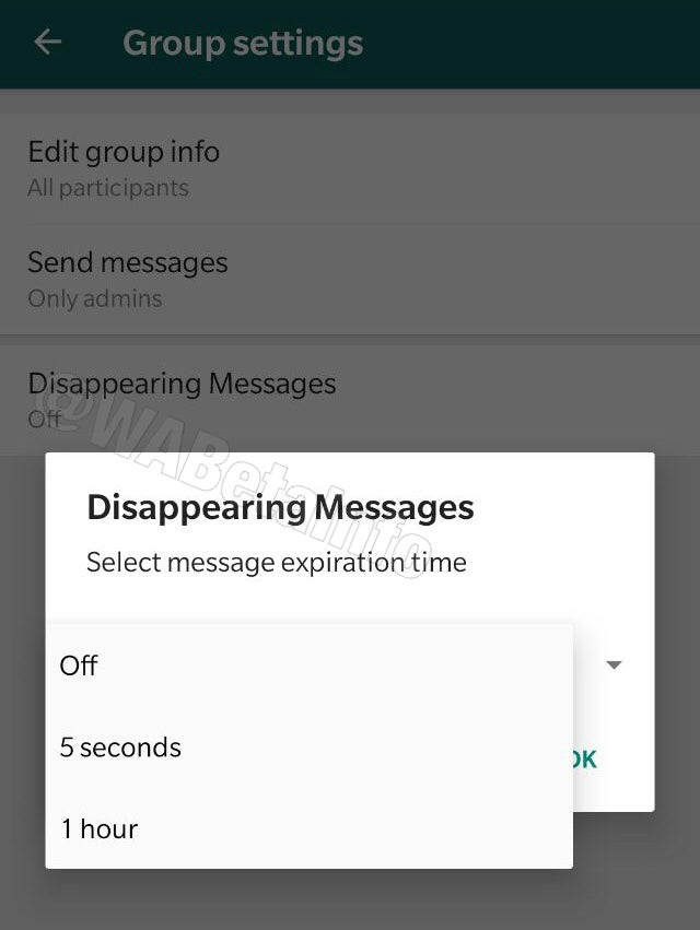 Whats App Disappearing Messages