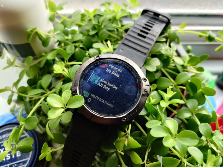 Garmin Fenix 6 lead