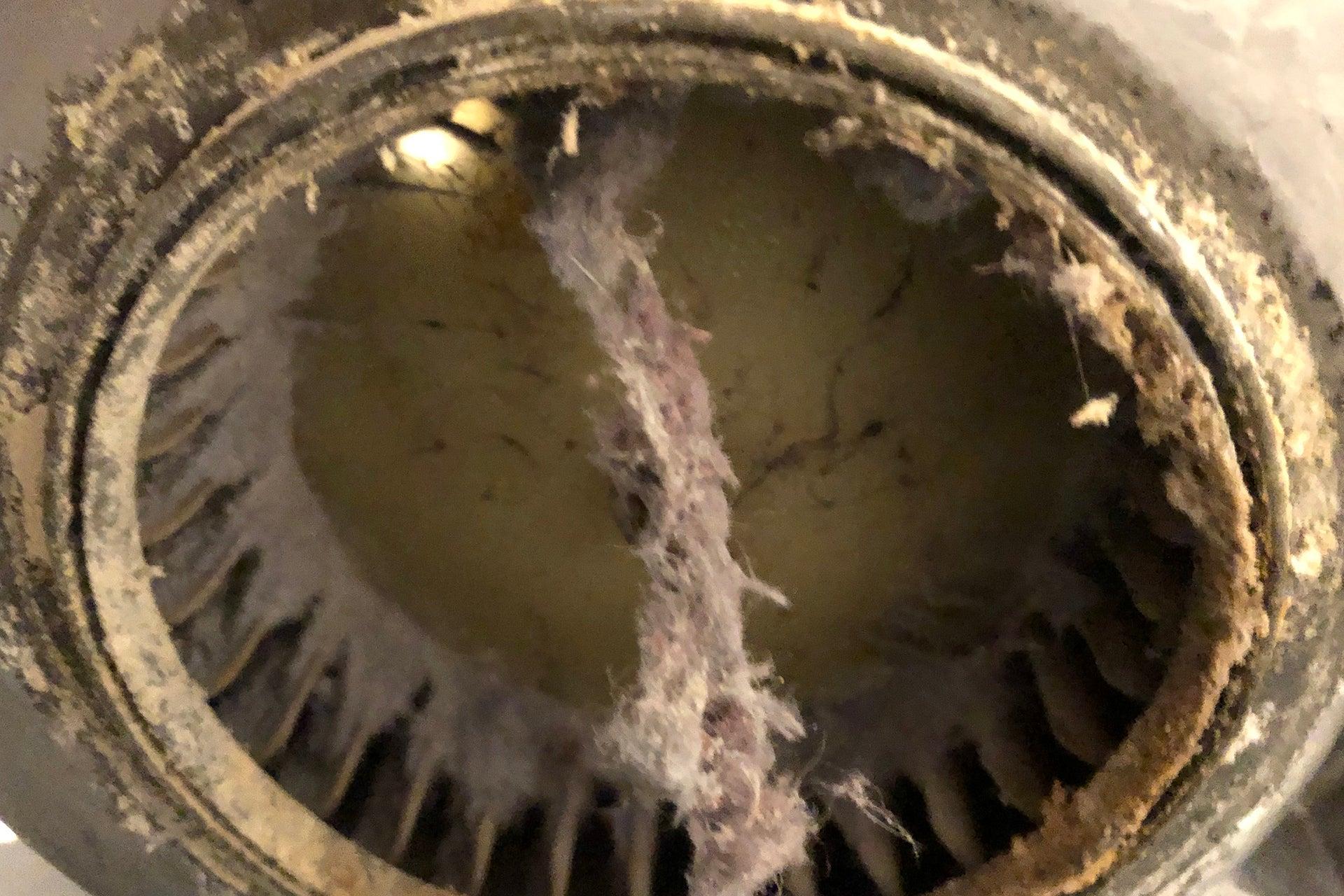 Washer Dryer dirty fan