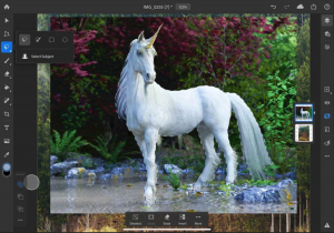 Adobe Photoshop on iPad