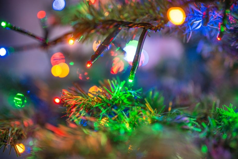christmas tree shining on night