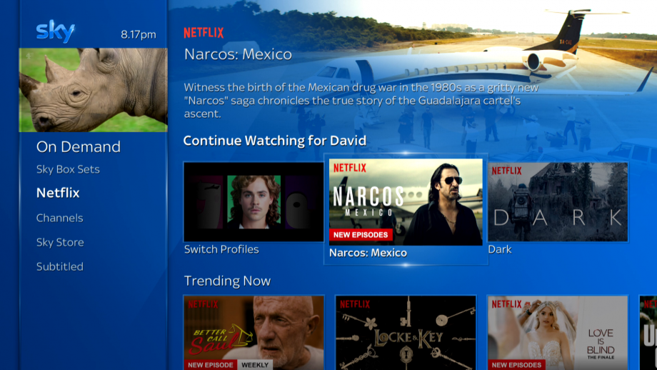 Sky Q Netflix