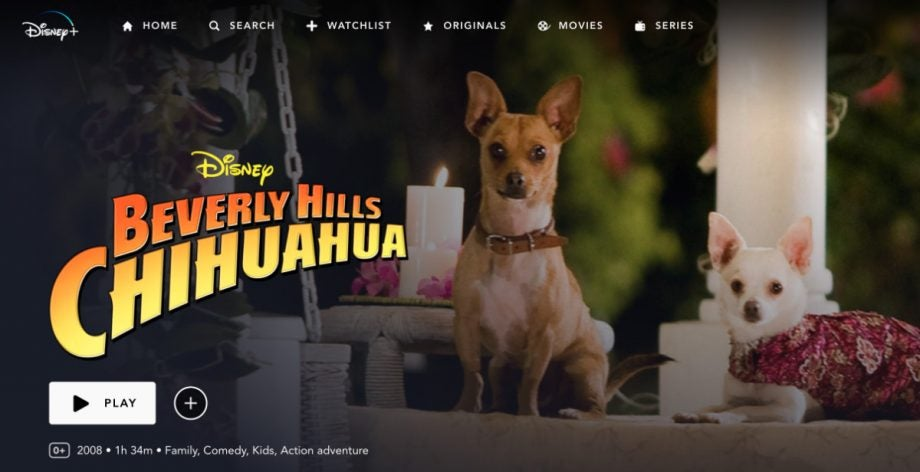 disney plus beverly hills chihuahua