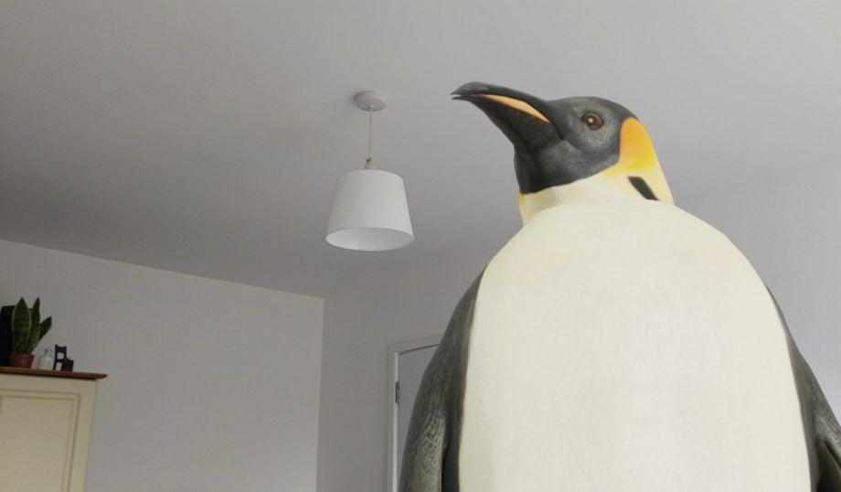 google ar penguin