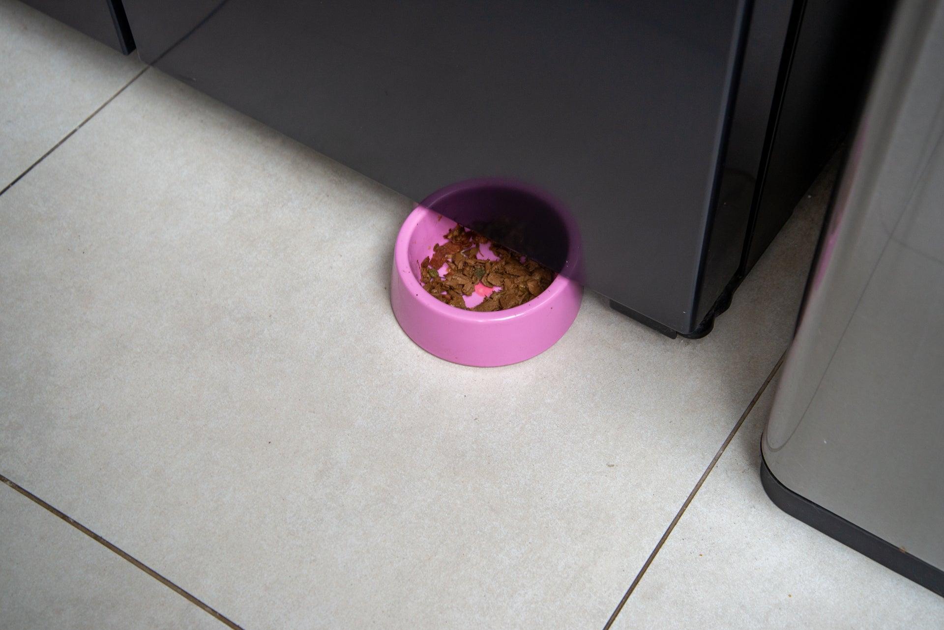 Roborock S6 MaxV pet bowl moved