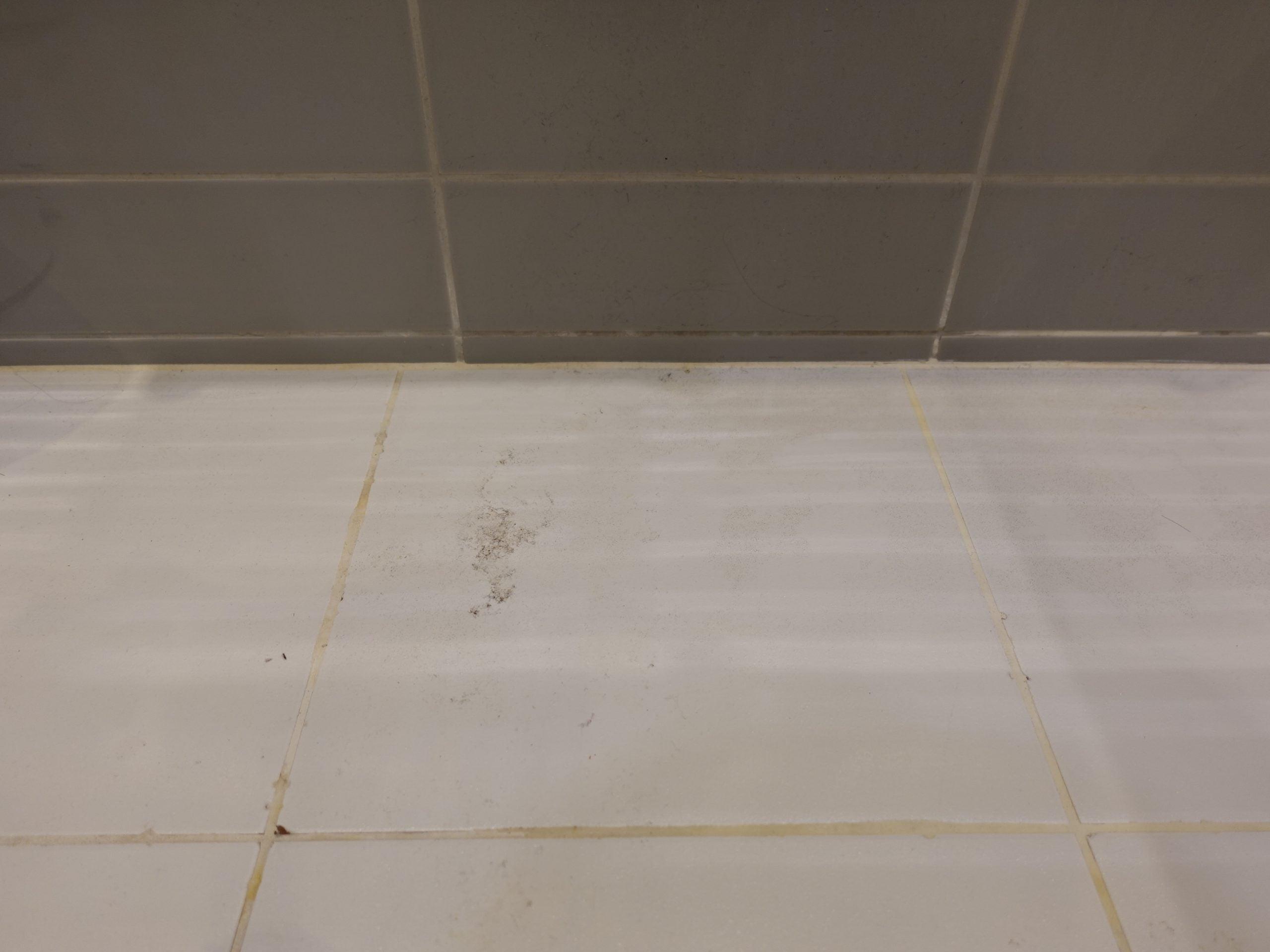 Karcher SC3 Upright EasyFix hard floor tiles dirty