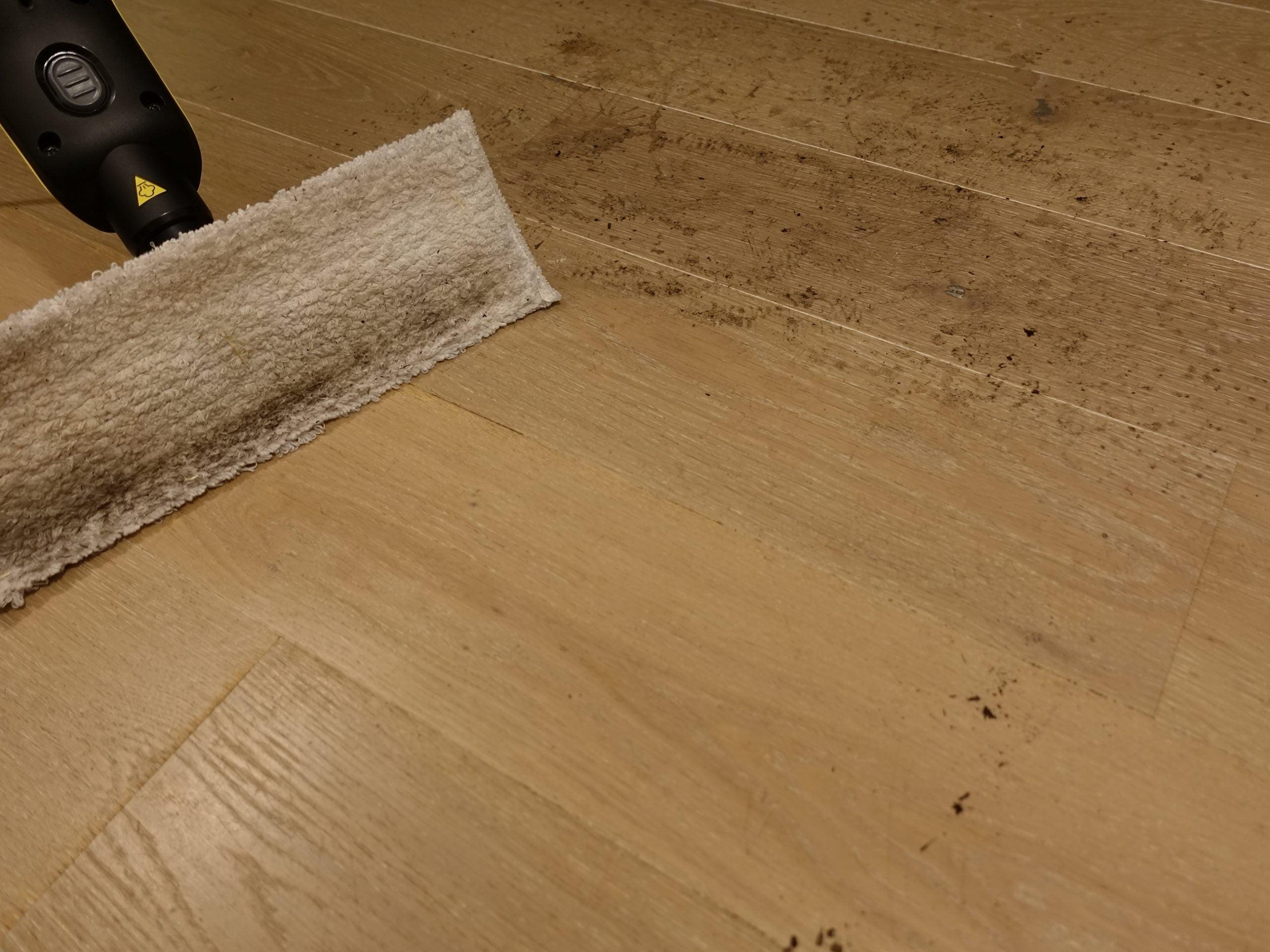 Karcher SC3 Upright EasyFix after cleaning