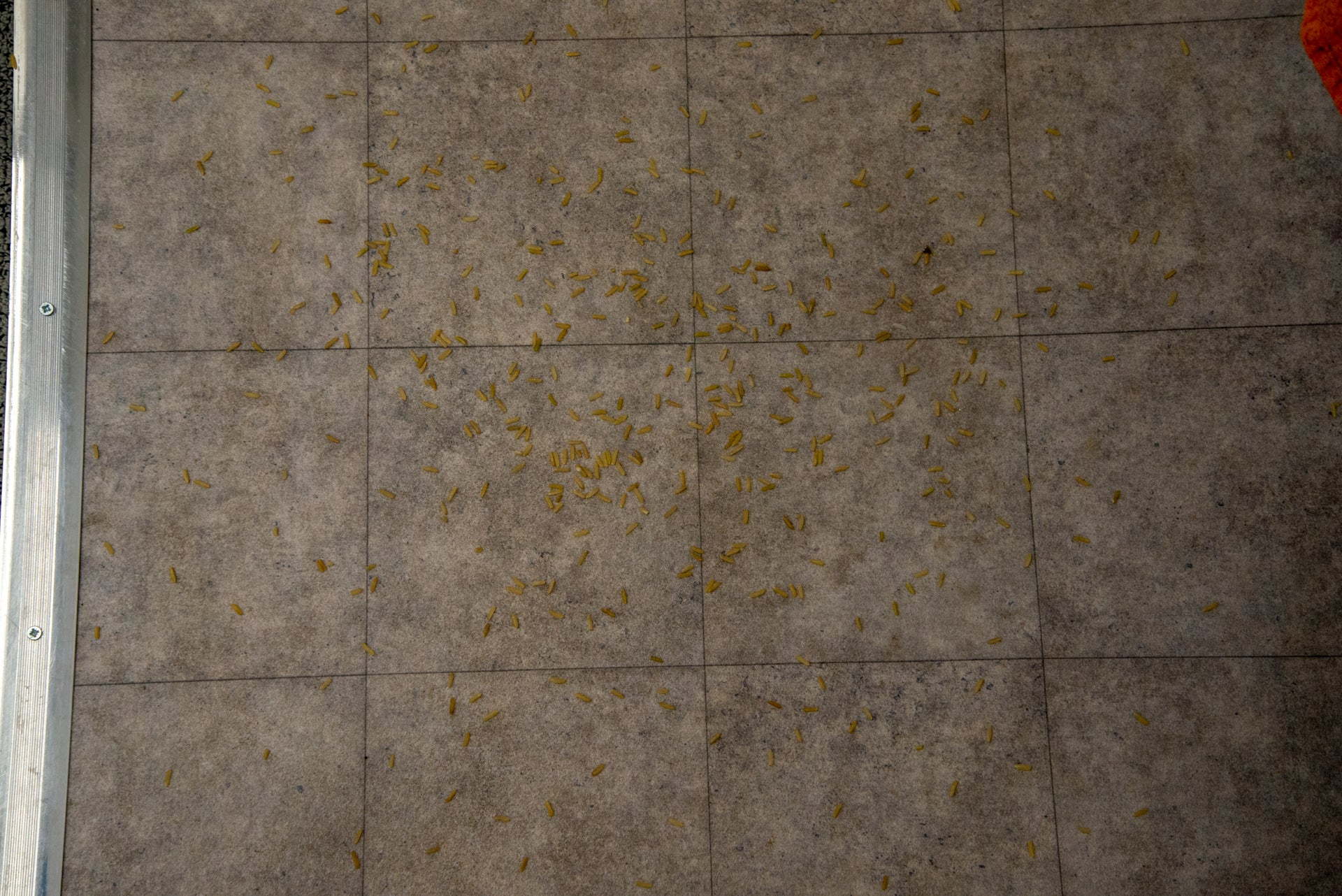Ultenic U11 dirty hard floor