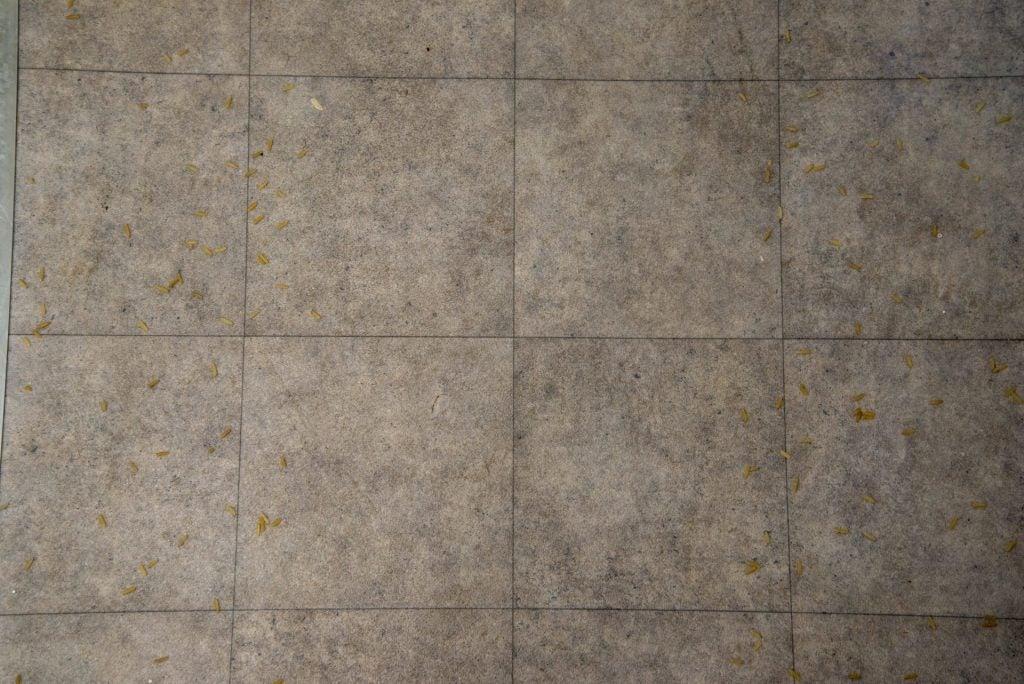 Roborock H7 piso duro limpio