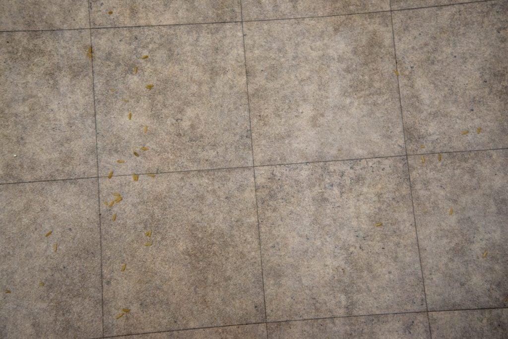 Stihl SE 33 piso duro limpio