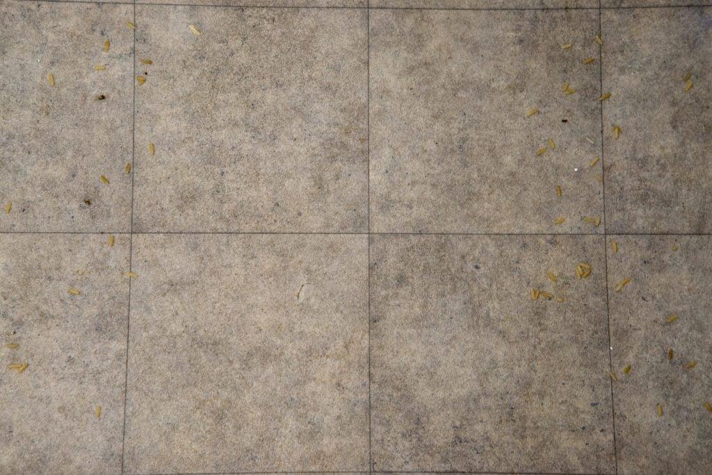 Beko PowerClean Cordless Vacuum Cleaner VRT94929VI clean hard floor
