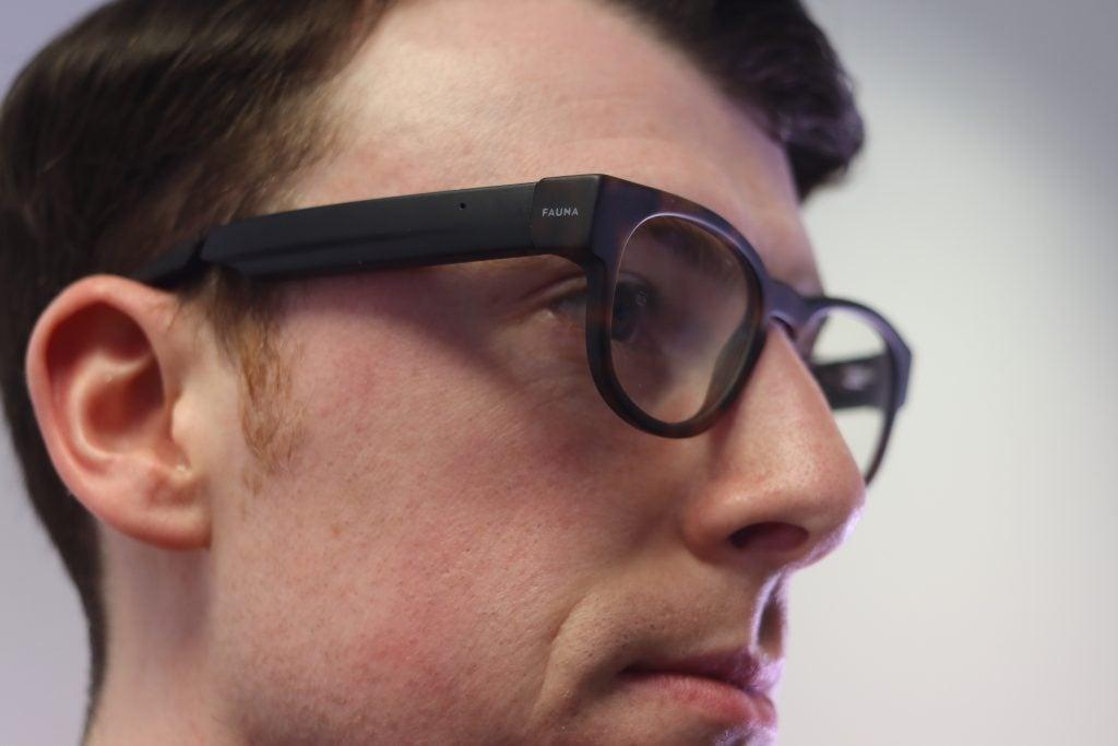 Fauna Audio Glasses